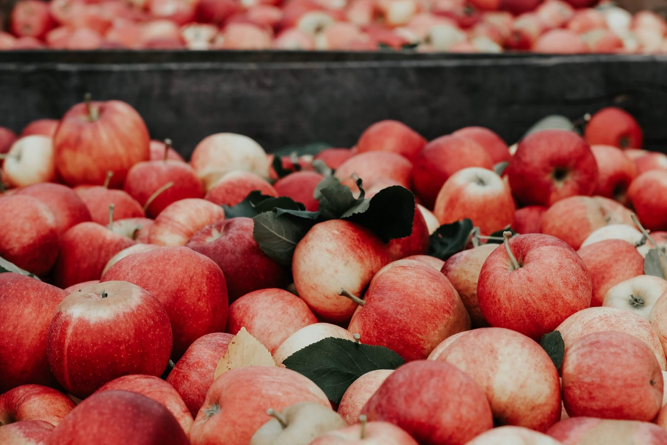 alma jótékony hatása